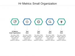 Hr Metrics Small Organization Ppt Powerpoint Presentation Styles Show Cpb