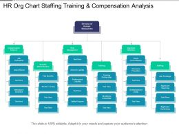 Hr Org Chart Staffing Training And Compensation Analysis