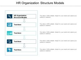 HR Organization Structure Models Ppt Powerpoint Presentation Layouts Introduction Cpb