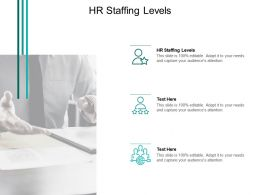 HR Staffing Levels Ppt Powerpoint Presentation Styles Icon Cpb