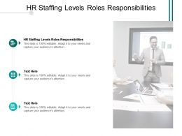 HR Staffing Levels Roles Responsibilities Ppt Powerpoint Presentation Inspiration Layout Cpb