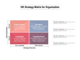 HR Strategy Matrix For Organization