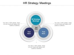 HR Strategy Meetings Ppt Powerpoint Presentation Outline Pictures Cpb