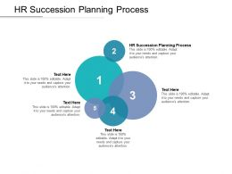 HR Succession Planning Process Ppt Powerpoint Presentation Icon Professional Cpb