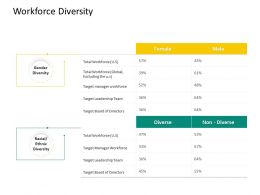 Hrs Technology Workforce Diversity Ppt Powerpoint Presentation Show Example