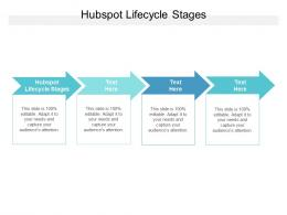 Hubspot Lifecycle Stages Ppt Powerpoint Presentation Ideas Diagrams Cpb