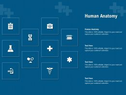 Human Anatomy Ppt Powerpoint Presentation Styles Gallery
