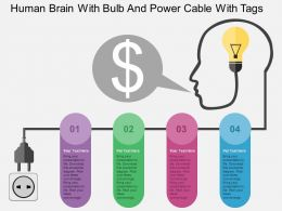 Human Brain With Bulb And Power Cable With Tags Flat Powerpoint Design