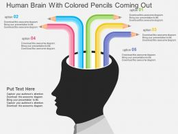 Human Brain With Colored Pencils Coming Out Flat Powerpoint Design