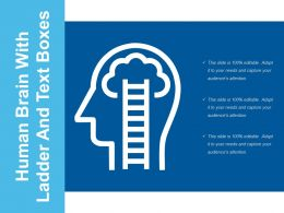 Human Brain With Ladder And Text Boxes