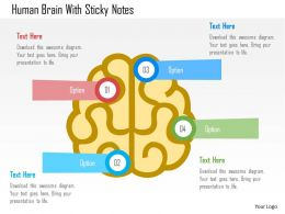 Human Brain With Sticky Notes Flat Powerpoint Design