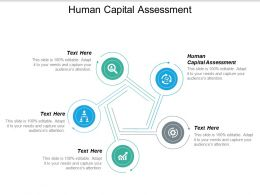 Human Capital Assessment Ppt Powerpoint Presentation Portfolio Sample Cpb