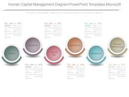 Human Capital Management Diagram Powerpoint Templates Microsoft