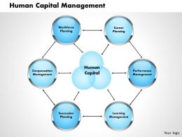 Human Capital Management Powerpoint Presentation Slide Template