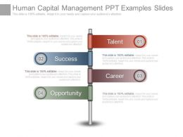Human Capital Management Ppt Examples Slides
