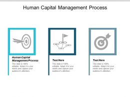 Human Capital Management Process Ppt Powerpoint Presentation Summary Rules Cpb