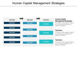 Human Capital Management Strategies Ppt Powerpoint Presentation Icon Example Cpb