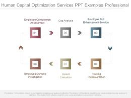 Human Capital Optimization Services Ppt Examples Professional
