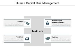 Human Capital Risk Management Ppt Powerpoint Presentation Slides Demonstration Cpb