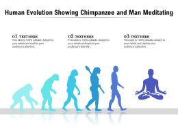 Human Evolution Showing Chimpanzee And Man Meditating