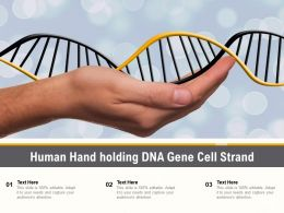 Human Hand Holding DNA Gene Cell Strand
