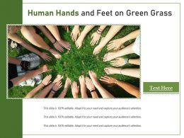 Human Hands And Feet On Green Grass