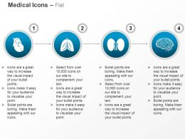 Human Heart Lung Kidney Brain Ppt Icons Graphics