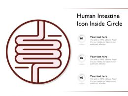 Human Intestine Icon Inside Circle