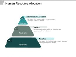 Human Resource Allocation Ppt Powerpoint Presentation Ideas Graphics Pictures Cpb