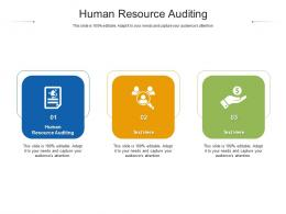 Human Resource Auditing Ppt Powerpoint Presentation Ideas Graphics Template Cpb