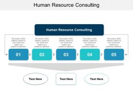 Human Resource Consulting Ppt Powerpoint Presentation Slides Elements Cpb