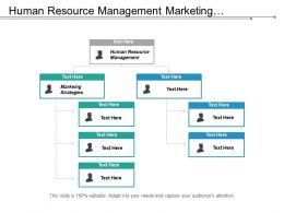 Human Resource Management Marketing Strategies Investment Risk Digital Strategy Cpb
