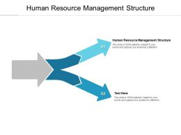 Human Resource Management Structure Ppt Powerpoint Presentation Inspiration Example Cpb