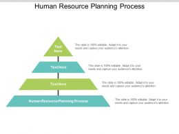 Human Resource Planning Process Ppt Powerpoint Presentation File Elements Cpb