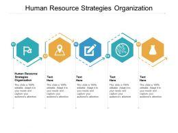Human Resource Strategies Organization Ppt Powerpoint Presentation Portfolio Background Image Cpb