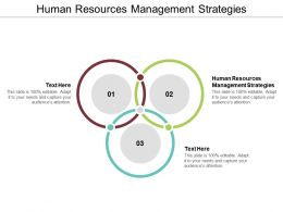 Human Resources Management Strategies Ppt Powerpoint Presentation Gallery Shapes Cpb