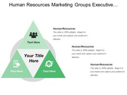 Human Resources Marketing Groups Executive Audit Management Analysis