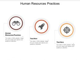 Human Resources Practices Ppt Powerpoint Presentation Gallery Design Ideas Cpb