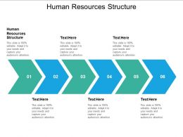 Human Resources Structure Ppt Powerpoint Presentation Slides Introduction Cpb