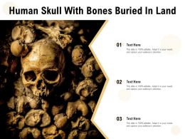 Human Skull With Bones Buried In Land