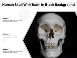 Human Skull With Teeth In Black Background