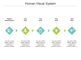 Human Visual System Ppt Powerpoint Presentation Infographic Template Files Cpb