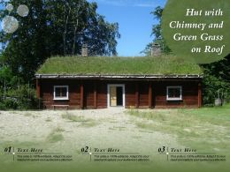 Hut With Chimney And Green Grass On Roof