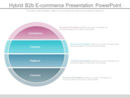 Hybrid B2b E Commerce Presentation Powerpoint
