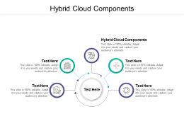 Hybrid Cloud Components Ppt Powerpoint Presentation Show Ideas Cpb