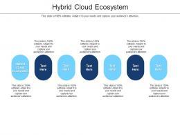 Hybrid Cloud Ecosystem Ppt Powerpoint Presentation Layouts Portfolio Cpb