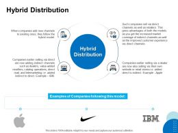 Hybrid Distribution Ppt Powerpoint Presentation File Outline