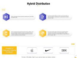 Hybrid Distribution Ppt Powerpoint Presentation Ideas Background Image