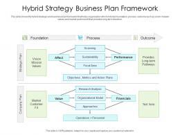 Hybrid Strategy Business Plan Framework