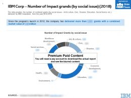 IBM Corp Number Of Impact Grands By Social Issue 2018